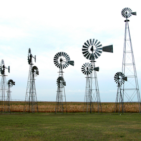 Windmills by Gayle Mittan - Buildings & Architecture Other Exteriors ( sky, country, green grass, windmill production, comstock, windmill, nebraska, clouds, manufacture, corn field, grasses, field, outdoors, round, farm, landscape, dried corn, wind )