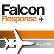 Falcon Response