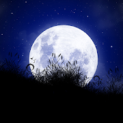 For Xperia Theme Moonlight