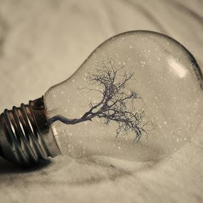 coldy winter bulb by Adrian  Limani - Digital Art Things