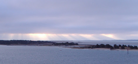 Photo: Morning rays...