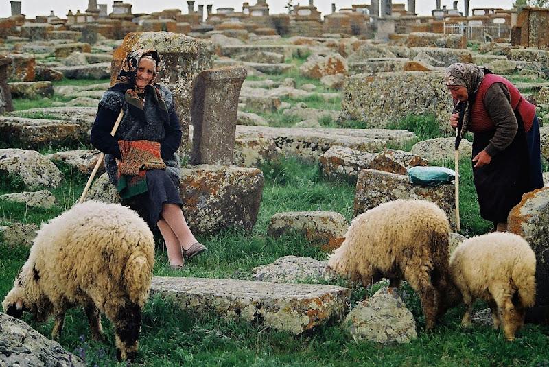 Pastorale tra le rovine di paolo-spagg