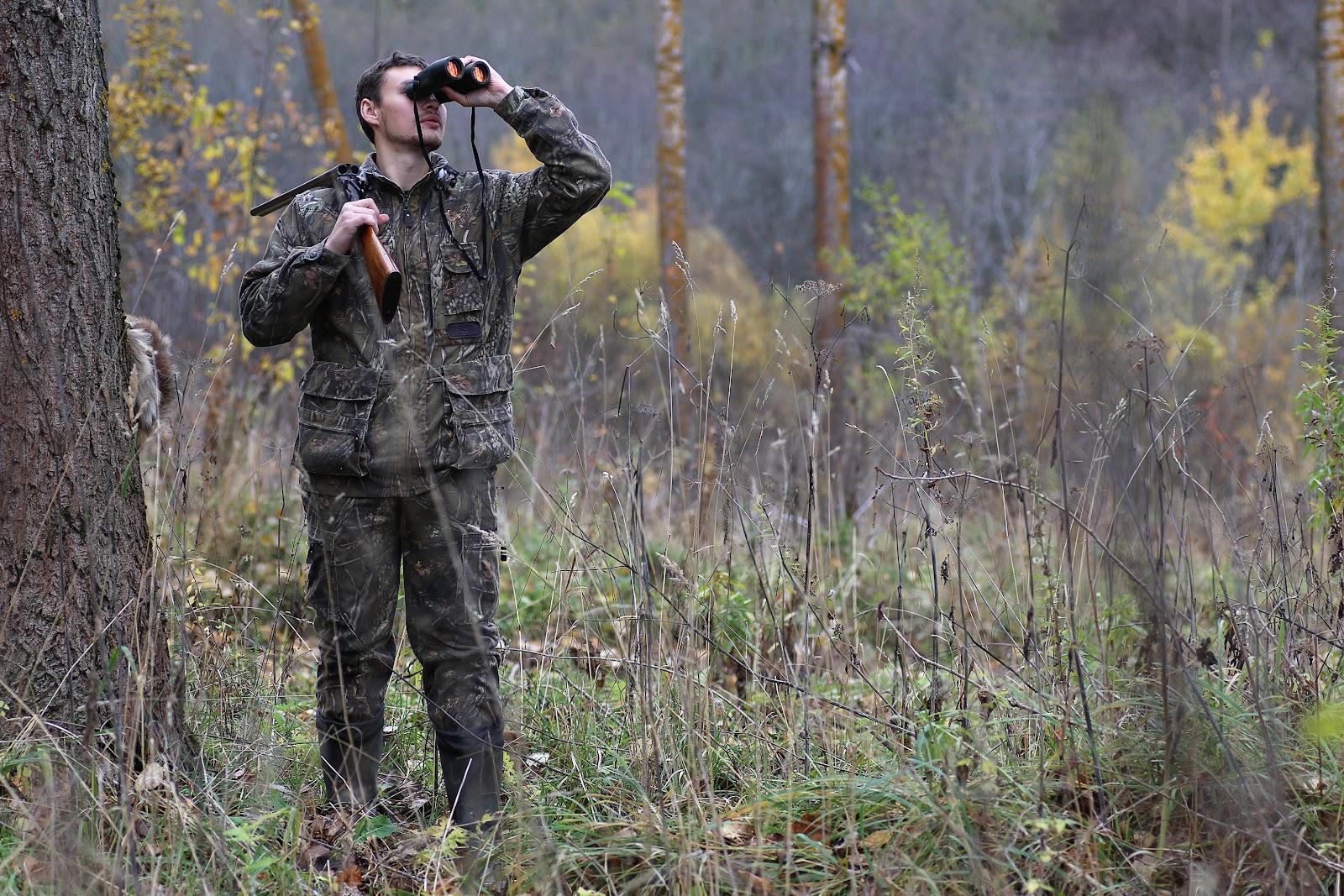spotting a bird