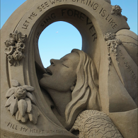 Sand Art by Janet Gilmour-Baker - Artistic Objects Other Objects ( sand, sandart competition, vancouver island, ocean, artistic objects, sandart, parksville, island,  )