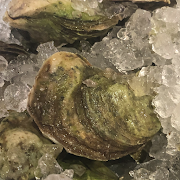 Summer Love Oysters