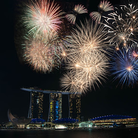 Celebrations by Leong Shun Jie - City,  Street & Park  Skylines ( fireworks, landscapes, nightscape )