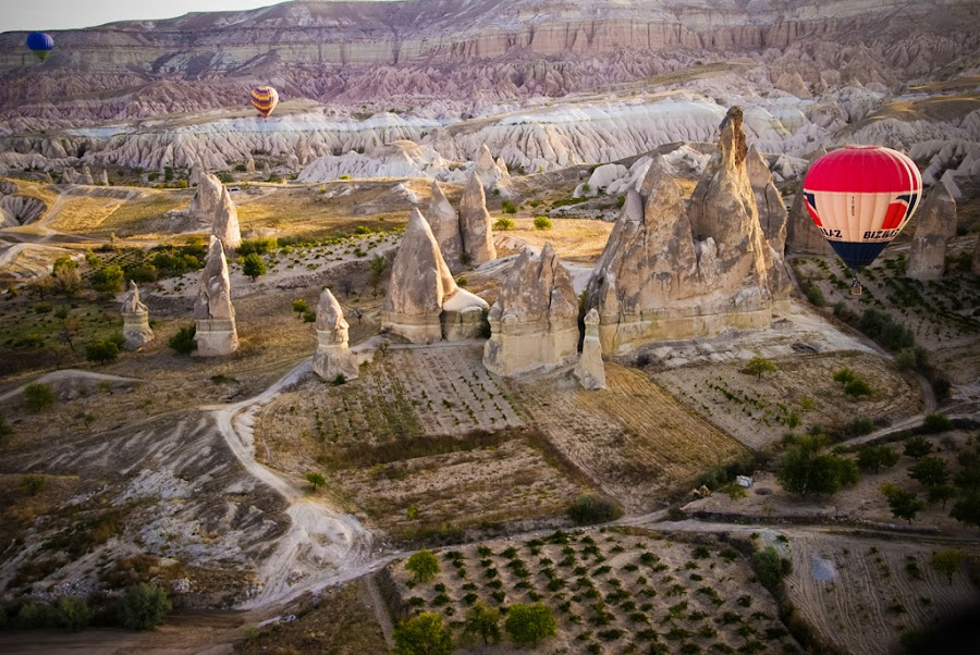 Balloons Over Cappadocia by Jethro Delgado - Landscapes Travel