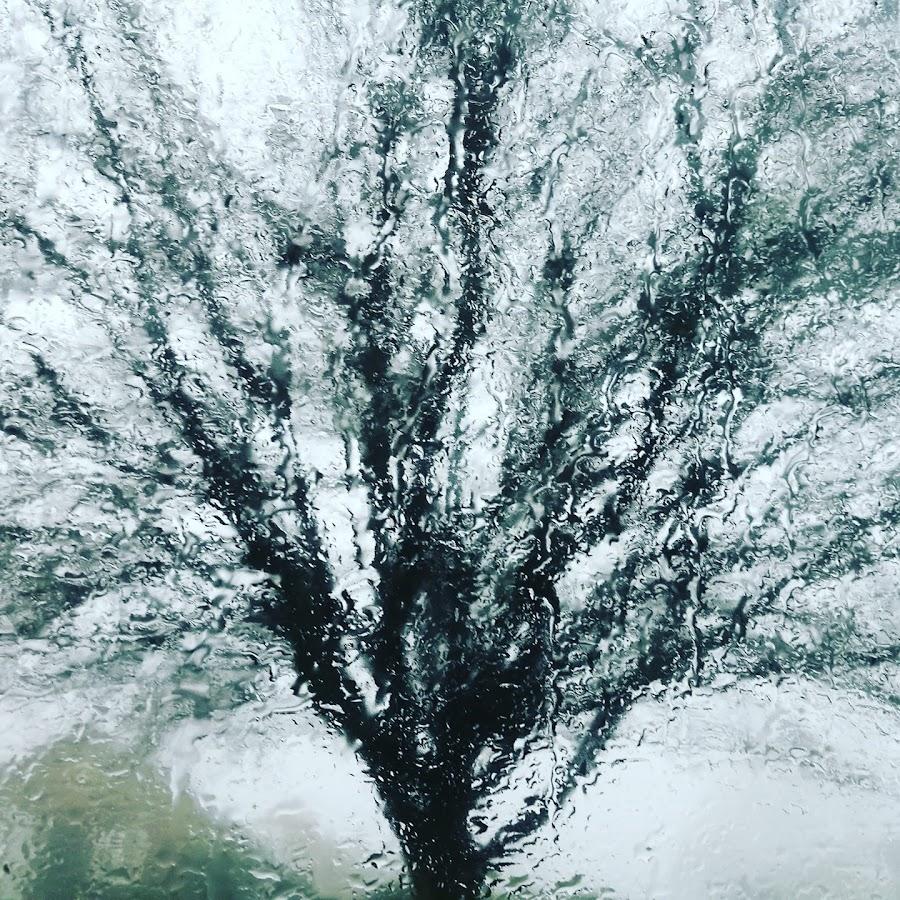 Tree reflection  by Sam Kirimli - Abstract Water Drops & Splashes
