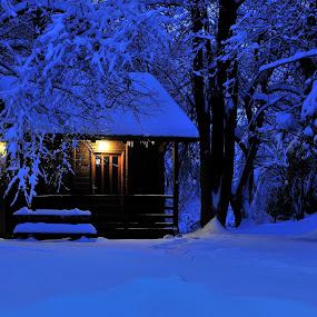 Dusk... by Zvonimir Cuvalo - Landscapes Forests ( winter, plitvicka jezera, snow, croatia, plitvice lakes, dusk )