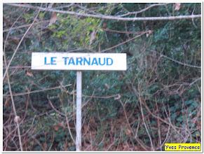 Photo: Ne confondons pas l'eau du Tarn et le Tarnaud ....