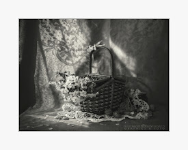 Photo:  basket, nuts and cherry blossom on napkin