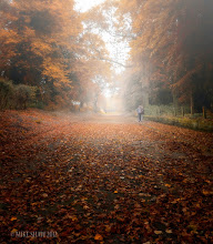 Photo: These Days Should Never End  The silence of being alive The feel of my breath as it leaves my lungs The rustle of leaves as they scatter under foot And a gentle mist that caresses me as I walk Little moments captured in my minds eye.  A path that leads away An end you cannot see I am the white rabbit I may not lead you to somewhere safe But I will lead you to somewhere new.