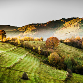 by Nicolae Fanurie Chirobocea - Landscapes Mountains & Hills (  )