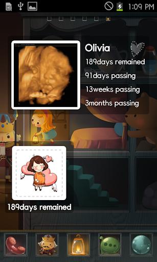 Pregnancy Calculator Widget Screenshot