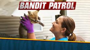 Bandit Patrol thumbnail