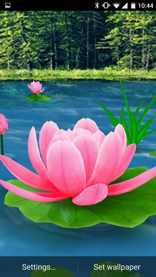 flower live wallpaper 3d android apps on google play