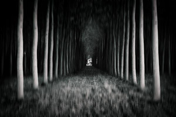 Pianura misteriosa di Matteo Masini