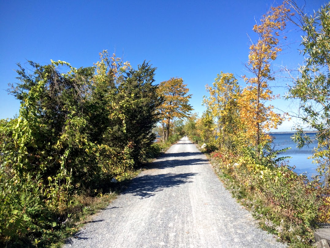 Here the trail turns to crushed granite, along the old RR causeway that heads to Grand Island.