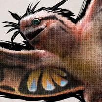 シノマクロプス