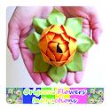 Origami Flowers Instruction icon