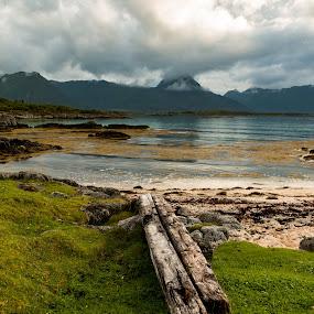 vesteraalen by Thomas Ebeltoft - Landscapes Beaches ( canon, logs, beautiful, vesteraalen, sea, beach, norway )