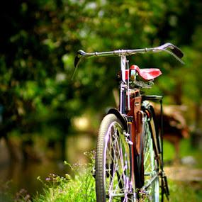 by FJ FJ - Transportation Bicycles