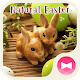 Cute Wallpaper Natural Easter Theme Download for PC Windows 10/8/7