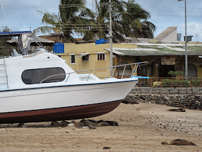 Photo: Puerto Baquerizo Moreno is a sleepy beach town in more ways than one.