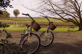 Photo: Sutton Estate Electric Bike hire #huntervalley #bikes #fun #visitnsw Around Hermitage