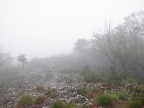 谷山西尾根のカレンフェルト帯