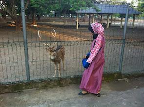 Photo: Prambanan. Yogyakarta, Indonesia.  Enero 2014.