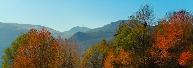 Photo: Herfstkleuren, zoals Jos beloofd had !