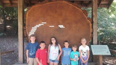 Photo: Cousins: Noah, Shane, Samantha, Jaxon, Kayden, Natalie