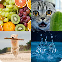 4 Pics 1 Word: Guess the Picture icon
