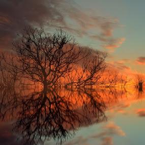 Reflection by Dunja Milosic Odobasic - Digital Art Places (  )