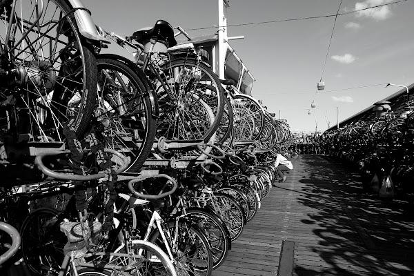 Biciclette ad Amsterdam di Andrea F