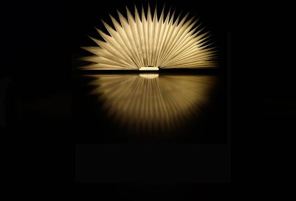 """Un """"sol"""" libro di Enoisullillusione"""