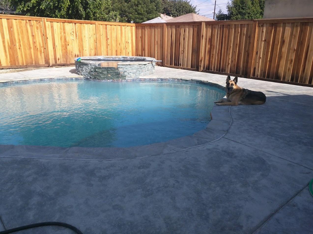 new pool build in los angeles