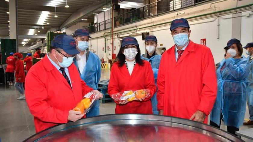 Marta Bosquet ha recorrido las instalaciones de Vicasol 3 en El Ejido, y ha felicitado a los socios por el trabajo que realizan