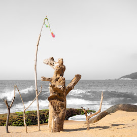 primitive sculpture  by rqserra by Rqserra Henrique - Artistic Objects Other Objects ( fineartphoto, minimal, art, primitive, contemporary, beach, sculpture, contemporaryart, fineart, rqserra )