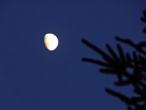 Photo: Site 21- Gibbous moonrise.