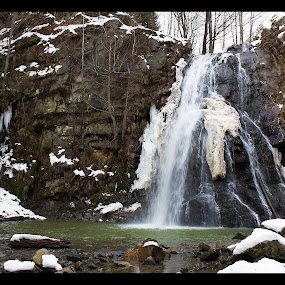 Bucias Falls by Pricope Alex - Landscapes Forests ( water, winter, awesome, falls, best, nice, forest, colours )