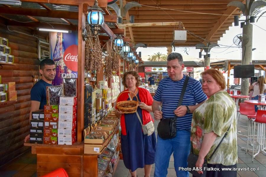 Гид в Израиле Светлана Фиалкова с туристами на индивидуальной экскурсии. Остановка на перекрестке Цомет Альмог. Иудейская пустыня возле города Иерихон.
