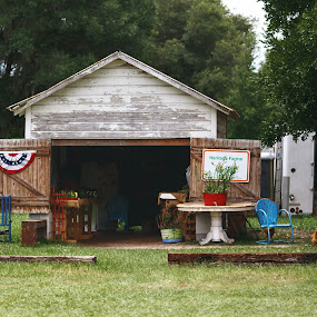 farmers marke by Debi Henry - Animals Other ( market, red white and blue, old barn, summer, chickens )