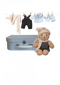 Nallebjörn i väska