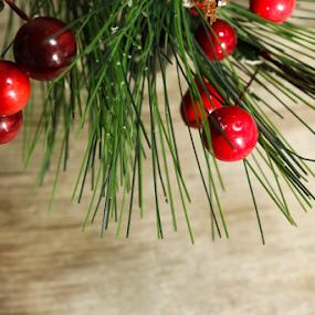 Christmas background by Vrinda Mahesh - Public Holidays Christmas ( holiday card, xmas, horizontal, christmas border, background, xmas card, christmas greetings, christmas card, xmas backgrounds, ornaments )