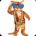 Amazing Cat icon