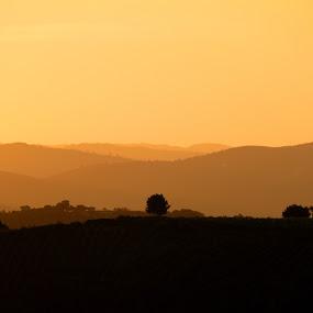 Alto Douro Vinhateiro by Joaquim Machado - Landscapes Sunsets & Sunrises ( douro porto wine donelo portugal jomacphotography )