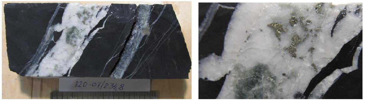 Хлорит-карбонат-кварц-сульфидные прожилки в алевропесчанике.