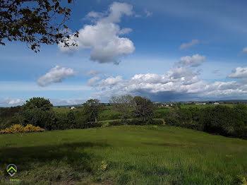 terrain à Pradinas (12)